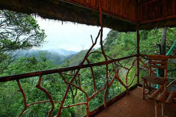 Tree House_Balcony
