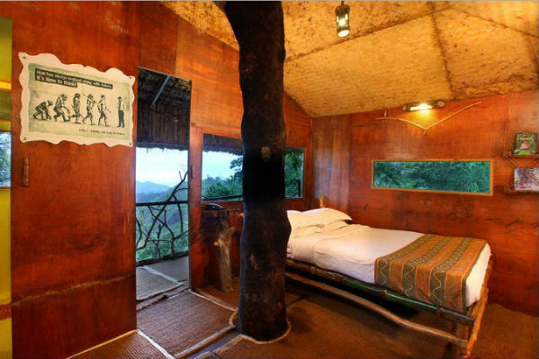 Tree House_Bed Room
