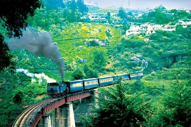 Honeymoon At Ooty Tripdoers