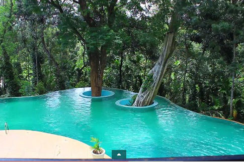 Coorg Wayanad Ooty Honeymoon Book Honeymoon Packages For Coorg
