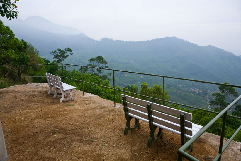 Tea Valley_view point