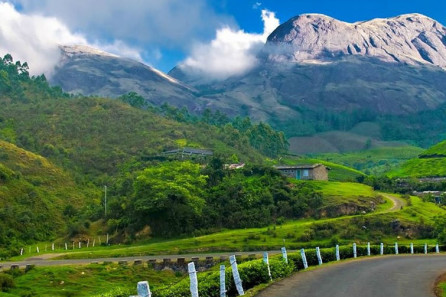 Munnar travel packages