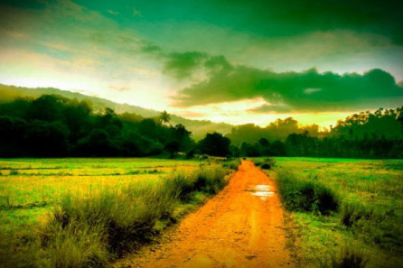 Coorg Ambience